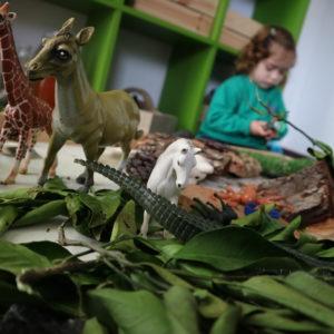 Dinoschool, escuela infantil bilingüe en el Vedat de Torrent, Valencia