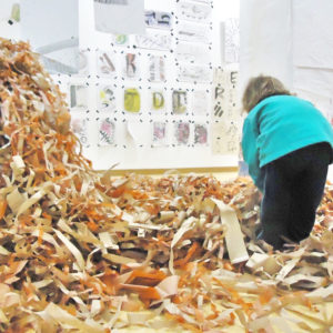 Dinoschool, escuela infantil bilingüe en Benimaclet, Valencia
